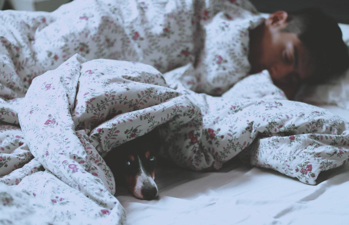 【寝る時だけでも】ふんどしの健康メリット【妊活男子にもオススメ】
