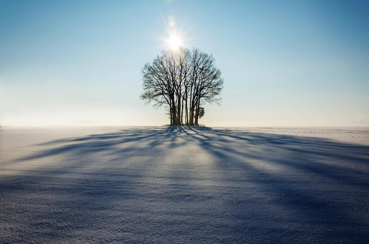 【自然の法則に学ぶ]】迷った時は広い視野を持とう【人生のヒント】
