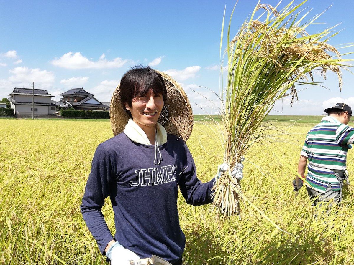 不耕起自然栽培の藤崎農場で稲刈りを体験【むかしながらの田んぼ】